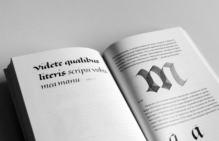 The spread from russian edition of The Stroke. Published by Dmitry Aronov's publishing house. Translated by Irina Smirnova. Moscow, 2013.