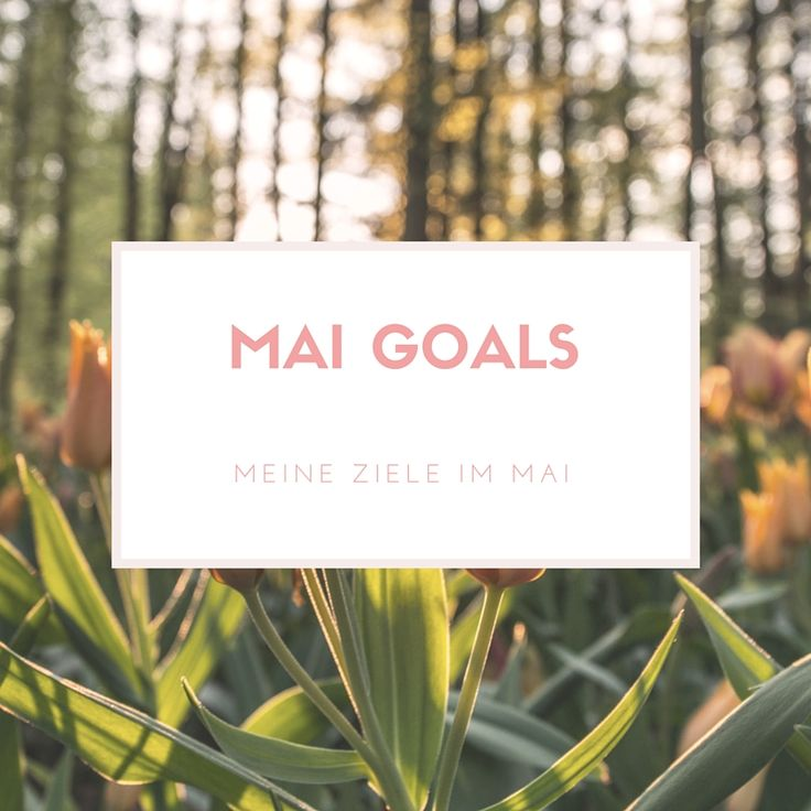 Mai Goals – meine Ziele im Mai