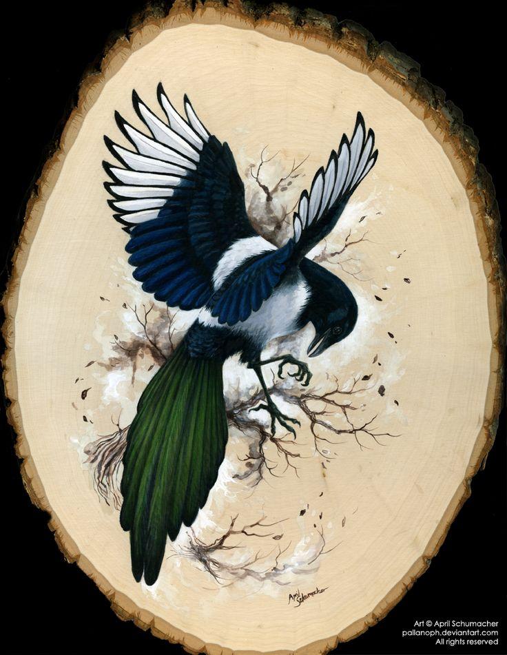pose for magpie tattoo...Resplendent Magpie by pallanoph.deviantart.com on @deviantART