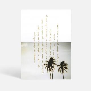 Blacklist Studio Palms Print