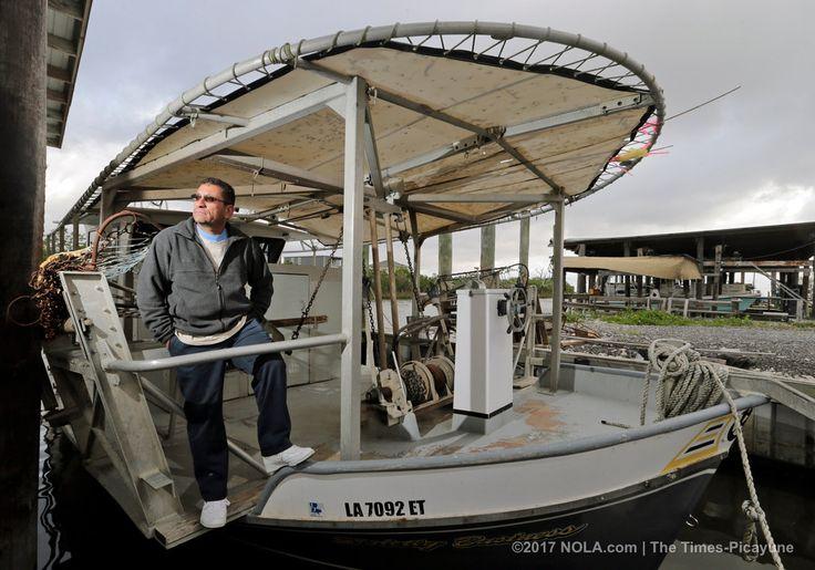 Studies forecast doom for oyster beds in Breton Sound.