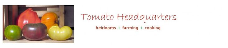 Tomato Headquarters - What is the best for supporting heirloom tomatoes?