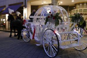 Cinderella Hochzeitskutsche, Wydra Kutsche, Hamburg, Cinderella, Disney, Traum