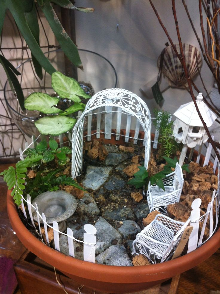 FAIRY GARDEN! Great project with kids. Small plants in a short wide pot. Add dollhouse furniture for a fairy backyard! So adorable