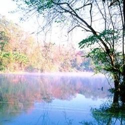 Go inner-tubing at one of Florida springs, natural water parks. VISITFLORIDA.com