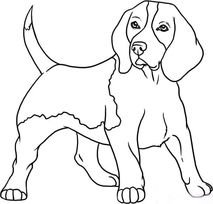 Картинки для срисовки собак легкие