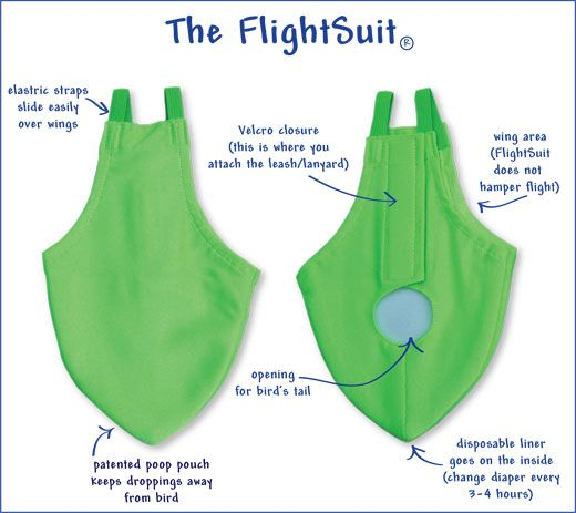 FlightSuits™ Bird Diapers from Avian Fashions   I got diapers for my Pekin duck here, they were the best. They also make diapers for most birds form Lovebird to Pigeon to African Gray to Parakeet to Crow to Parakeet; well you get the idea. It definately prevents poop all over the house if you let your birds roam free inside or just keeping the cage cleaner. They also have suits for Service Birds. Try it, you'll like it.   www.FlightQuarters.com