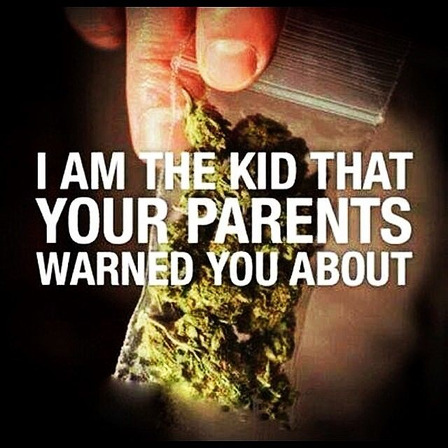 Stoner Friendship Quotes: 282 Best Images About The Life I Choose To Live On