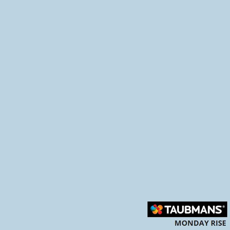 #Taubmanscolour #mondayrise