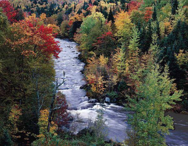 Atlantic Canada - 2016 Promotional Calendar  November 2016 - Shogomoc Falls, New Brunswick