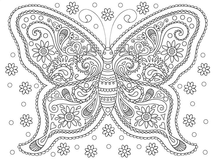 Adult Coloring Pages Butterfly 2 1 Coloring Board 1 Adult