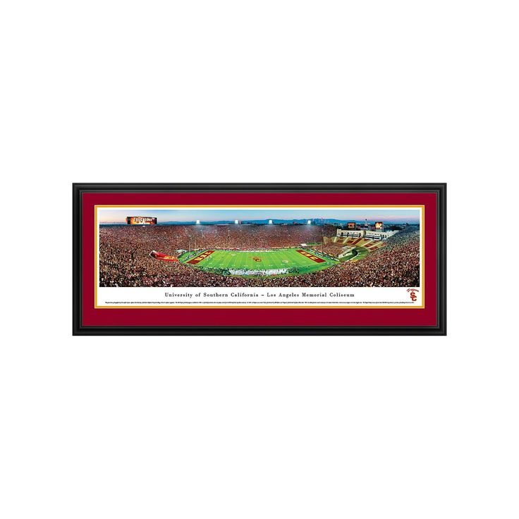 South Carolina Gamecocks Football Stadium Framed Wall Art, Multicolor