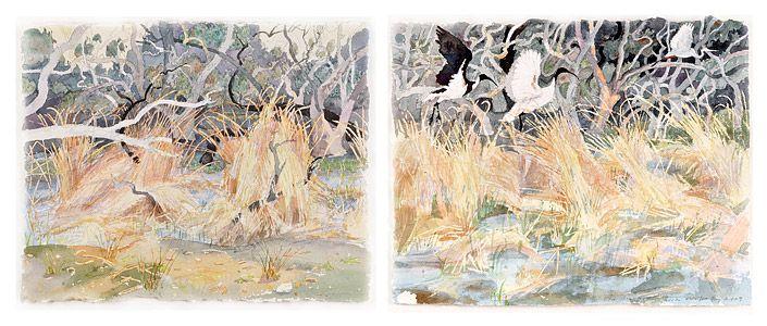 Dry rushes and environmental flow, Gwydir | John Wolseley via roslyn oxley9 gallery