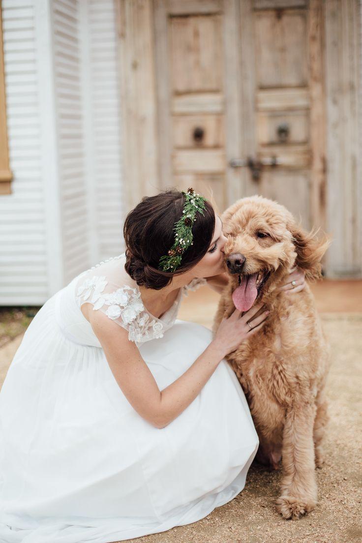 Goldendoodle, fall holiday wedding, pets at weddings, see the entire wedding on borrowedandblue.com // Danielle Stewart Photography