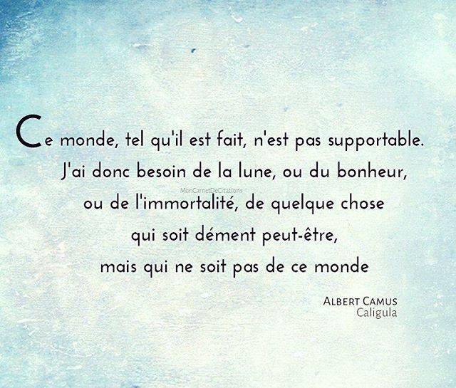 Ce monde, tel qu'il est fait, n'est pas supportable. J'ai donc besoin de la lune, ou du bonheur, ou de l'immortalité, de quelque chose qui soit dément peut-être, mais qui ne soit pas de ce monde. ✒️Albert Camus  #citation #citations #quote #quotes #inspiration #instadaily #instaphoto #quotesoftheday #poesie #bonheur #happiness #albertcamus