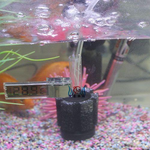 Дешевое Верный биохимический фильтр хлопок воды гоблин xy 2835 круглый аквариум фильтр аквариум аквариум аэратор, Купить Качество Пляжные зонты и тенты непосредственно из китайских фирмах-поставщиках:             [Марка]: верный                [Модель]: верный биохимических ватный фильтр воды гоблин XY-2835 (маленький ц