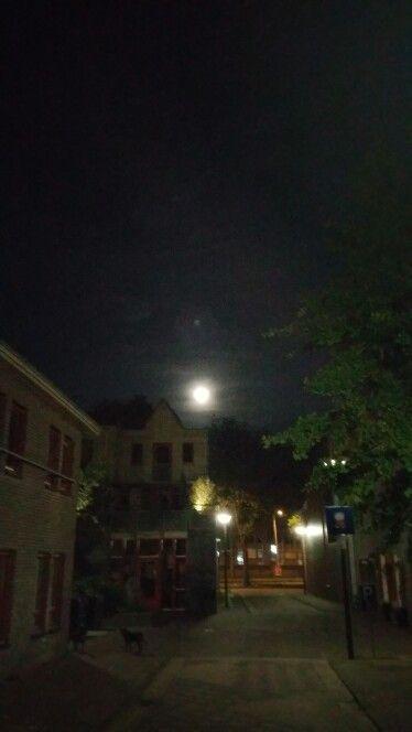 Damaststraat by night