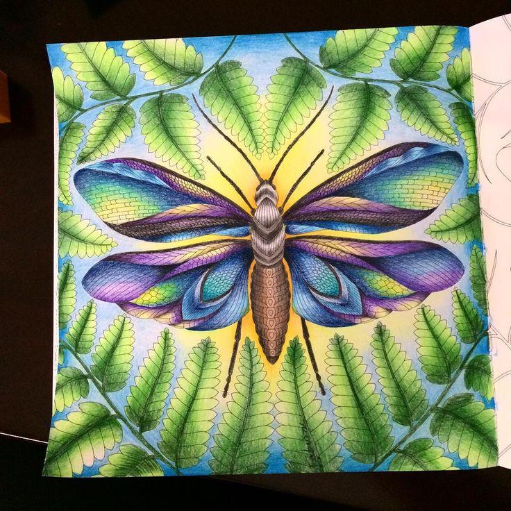 62 Best Color Pencil Art Images On Pinterest