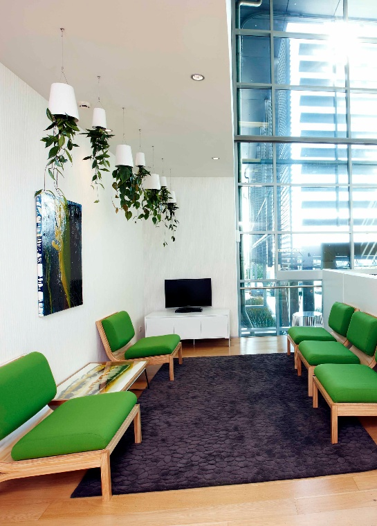 Auckland International Airport The offices at Auckland International Airport in New Zealand are home to this fresh and contemporary dispaly of medium and small sized Sky Planter Ceramic.