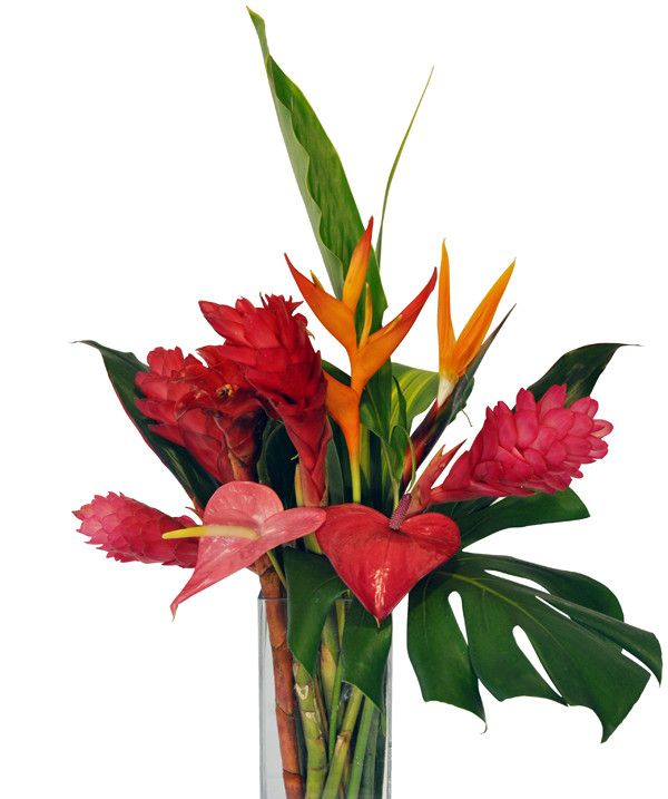 11 best Hawaiian tropical flower bouquets images on Pinterest ...