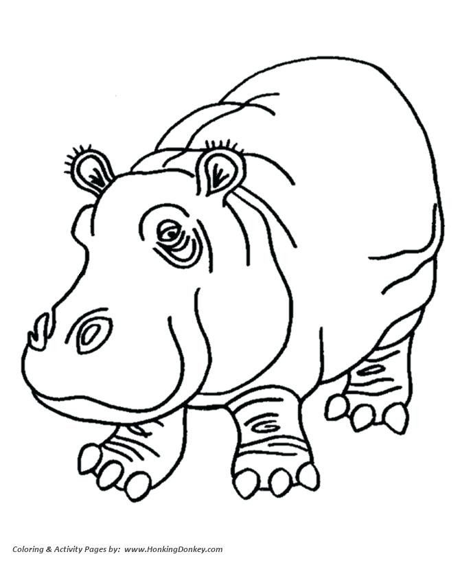Image Result For Hippo Line Drawing Animal Coloring Pages Coloring Books Coloring Pages
