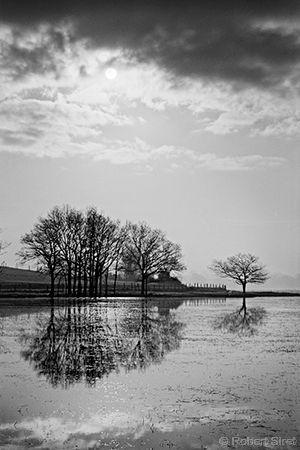 Photographie noir et blanc:Reflet en miroir des marais de Brière couvert d'eau en hiver. Revin à Donges en loire atlantique