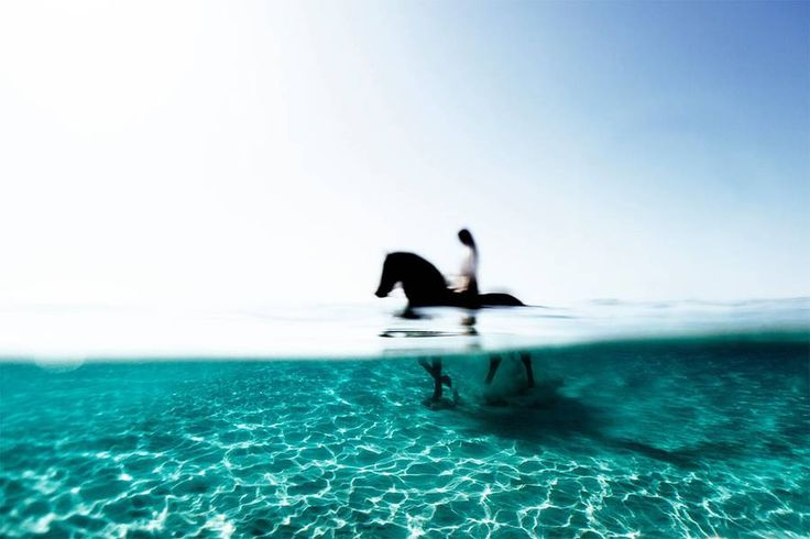 Fascinating Underwater Photographs – Enric Adrian Gener aka 27mm is a photographer born in Balearic Island. Passionate by aquatic beauty, he captures magical photographs of people and animals swimming in the big blue. Discover his fabulous underwater photographs in the following. More images on his website and online store.