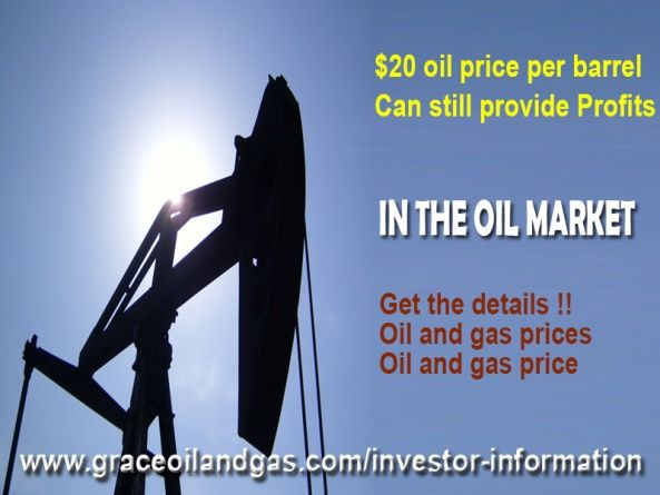 $20 oil price per barrel can still provide profits in the oil market - Services, Legal & Financial - Richardson, Texas, United States 885076