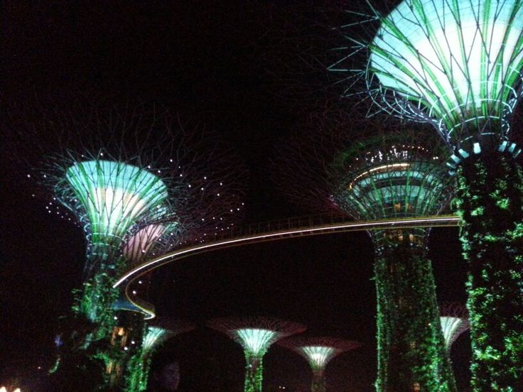 Gardens by the bay #singapore #trip #night #view