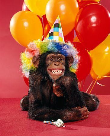 Открытка с обезьянкой на день рождения, надписью мне