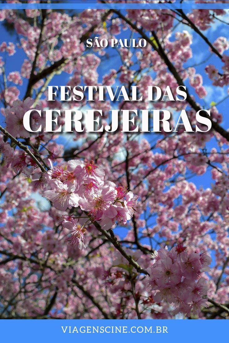 Festival das Cerejeiras no Parque do Carmo São Paulo: o Hanami, como é chamado esse evento, é um festival com origem japonesa que acontece uma vez por ano na Zona Leste de São Paulo