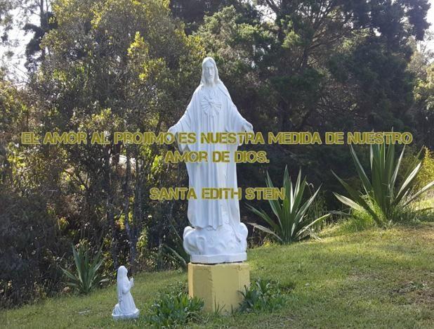 """#FRASES DE #SANTOS """"El amor al prójimo es nuestra medida de nuestro amor de Dios"""" ...Santa Edith Stein"""