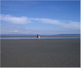 My local beach - Centennial Beach (Boundary Bay Regional Park) - Delta  #indigo #perfectsummer