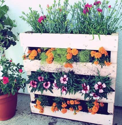 Vertical pallet planter. Would love this for flowers!