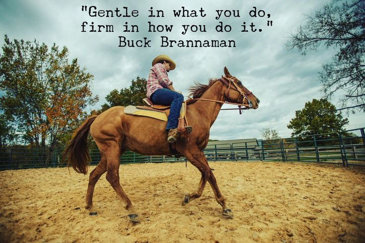 buck brannaman - Twitter Search