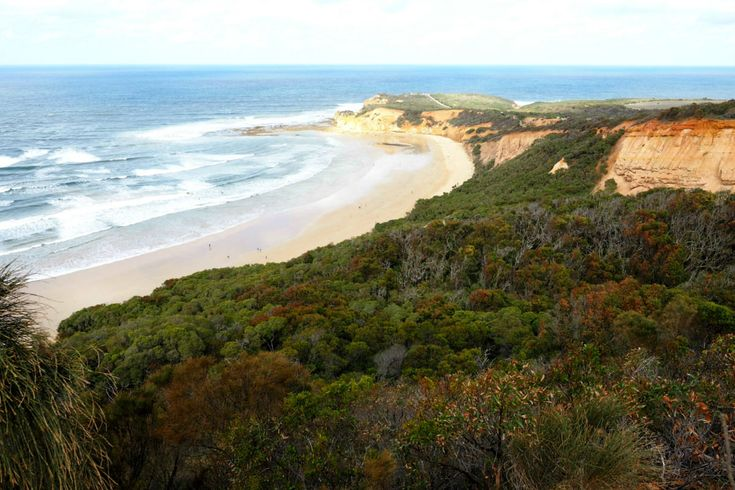 The view of Point Addis once you reach to top of the clay cliffs- epic! | Great Ocean Road
