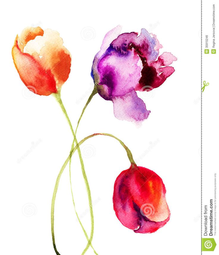 These loose, wet-in-wet tulips flowers watercolors from Bing Images are lovely. The colors are gorgeous, especially the pinks and purples. Very graceful stems. The white background is actually very effective here. Great lost and found edges.