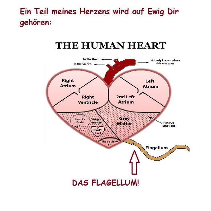 Anti Valentinstag Sprüche Lustig