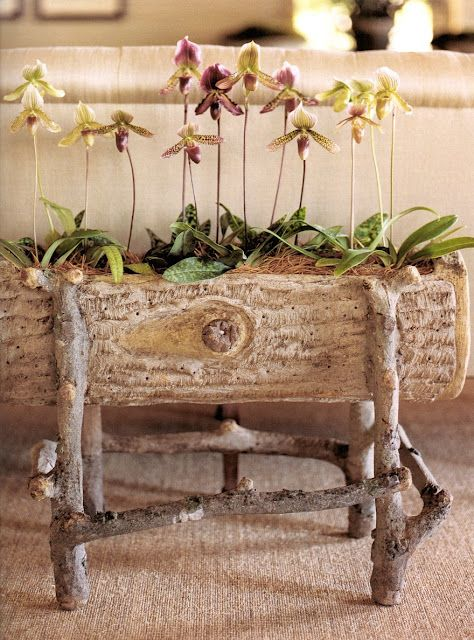 Orchids in antique faux bois planter - Martha Stewart . . . could also make out of a hollowed little log and branches
