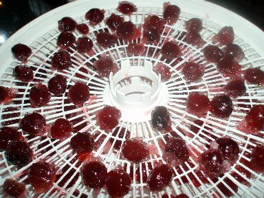 Make Your Own Candied Cherries  I will do this for my fruit cake, the cherry tree is just across the street!