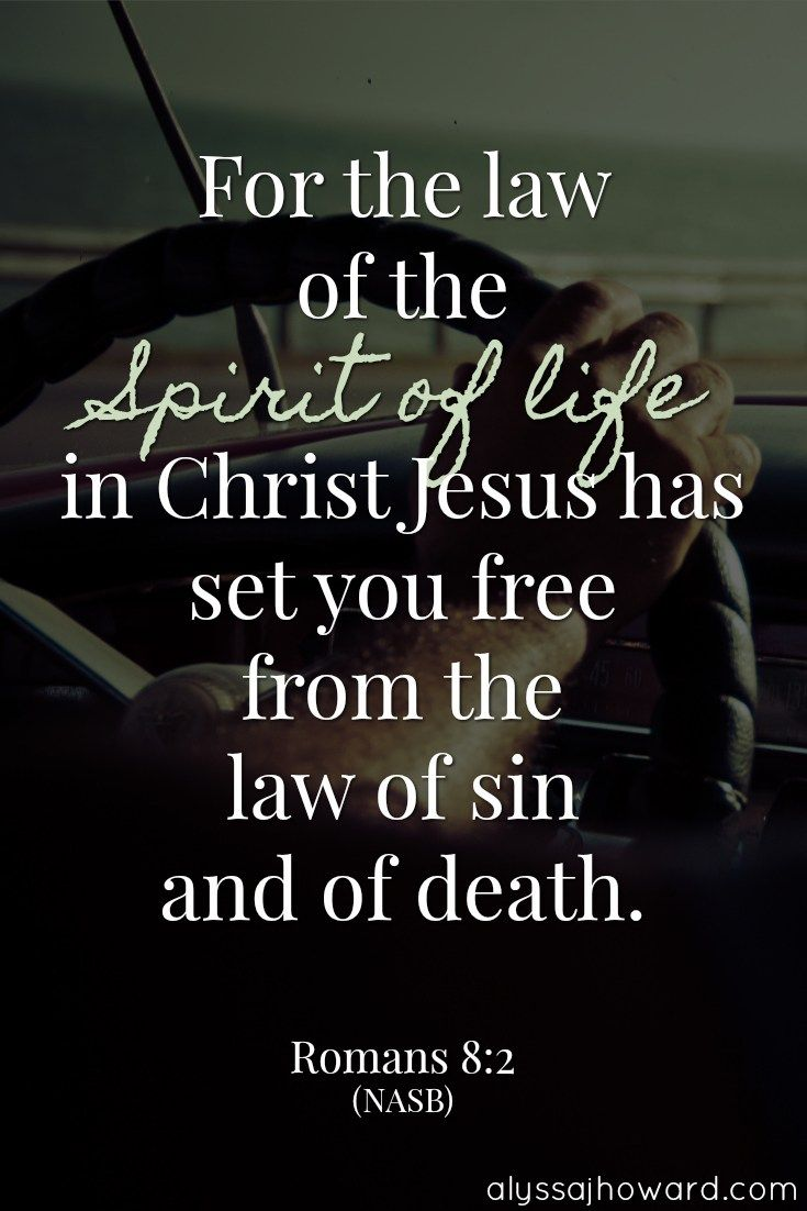 Who's in control – the Holy Spirit or my old sinful nature? Here's the truth: Sin may be powerful, but it is no match for the Holy Spirit. #BibleVerse