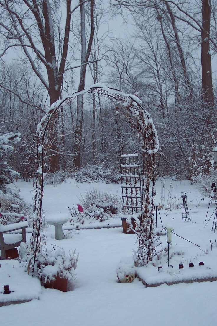 246 Best Garden Winter Images On Pinterest Winter