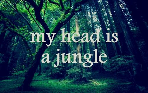 Jungle Book Love Quotes: 1000+ Love Birthday Quotes On Pinterest