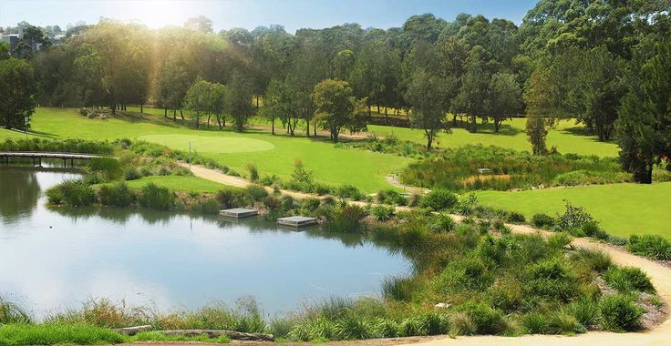 Golf enthusiasts will relish playing at Hurstville Golf Club. The beautiful greenery takes playing golf to another location. You'll think you're in paradise.   http://hurstvillegolf.com.au/wp-content/uploads/2013/11/rhome1.3.jpg