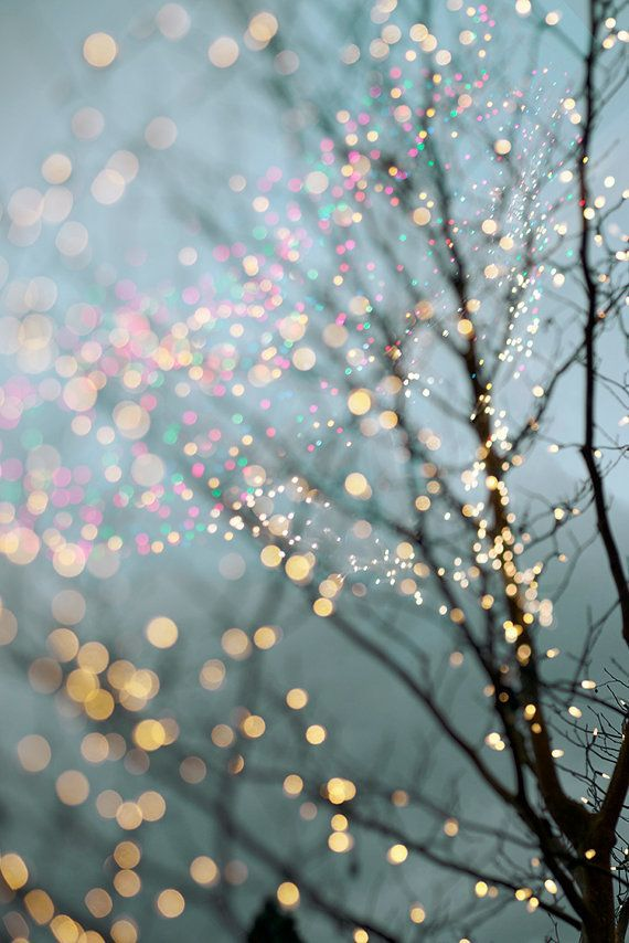 Winter Photography - Holiday Fairy Lights in Trees, Festive Winter Scene, Fine Art Landscape Photograph, Large Wall Art iPhone X Wallpaper 789185534676145966 4