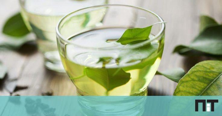 """""""O chá verde é um termogénico natural, devido àcafeína e catequinas presentes no chá verde que ajudam a acelerar o metabolismo e a queimar gordura"""", diz à NiT a nutricionista. Sugestão: troque a chávena de leite que bebe de manhã por uma chávena de chá verde sem açúcar. Assim, começa a estimular o metabolismo logo … Continued"""