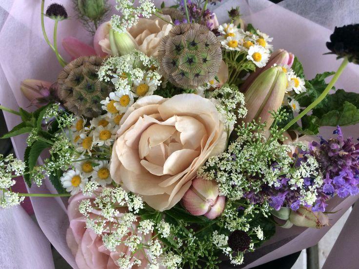 Parchment pink rose, scabiosa starball, feverfew, ammi, scabiosa