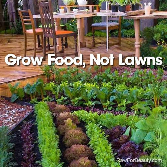 49 best Edible garden ideas images on Pinterest | Edible garden ...