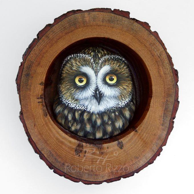 Civette e gufi dipinti a mano nella loro tana di legno! Opere d'arte da collezionare e regalare!