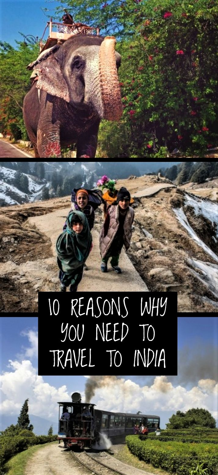 India is one nation that is known for offering varied experiences to its visitors. Along with several layers of history, there are a very few countries like India that has diversity in culture, religion, landscape, wildlife etc. Vacations in this country are worth-cherishing for a lifetime. Here are 10 reasons why you need to travel to India.